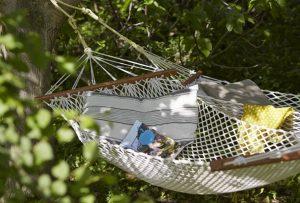 Vus de hamacs au coin des figuiers chambres d'hôtes en Provence