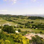 Vue de vigne de Rasteau village en Provence